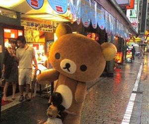 cute, japan, and rilakkuma image