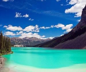 amazing, nature, and travel image