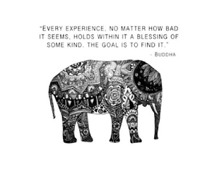 Buddha, quote, and blessing image