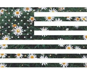 america, floral, and stripes image