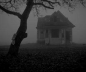 house, black and white, and tree image
