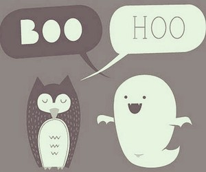 boo, funny, and owl image
