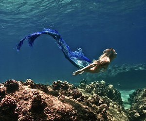 mermaid, ocean, and sea image