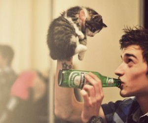 b&w, baby cat, and beer image