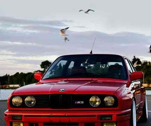 bmw, m3, and car image