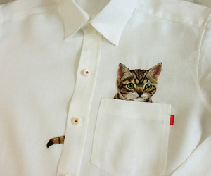 cat, outfit, and shirt image