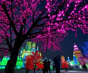 colorful, light, and lights image