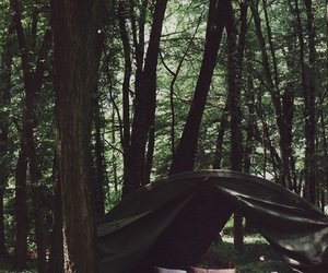 camping, tent, and woods image