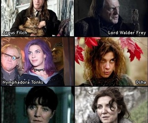 harry potter, game of thrones, and aragog image