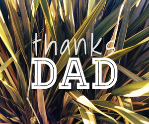 dad, thanks, and quotes image