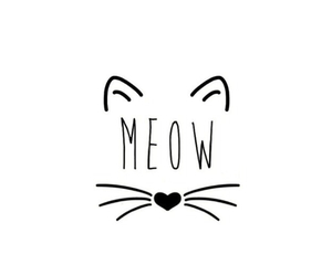 cat, meow, and wallpaper image