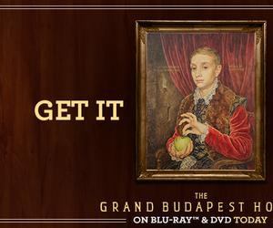 grand budapest hotel image