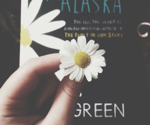 book, daisy, and flower image