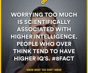 weird, facts, and 8fact image