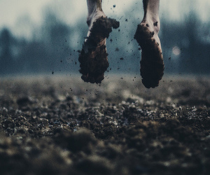 dirt, feet, and photography image