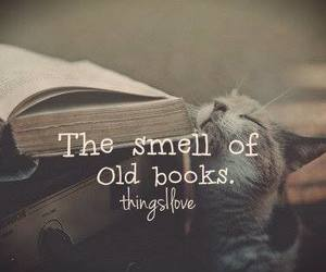book, smell, and cat image
