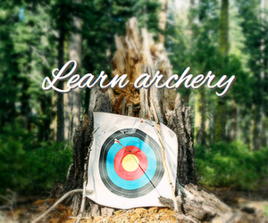 archery, arrow, and forest image