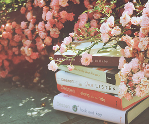 beautiful, photography, and books image