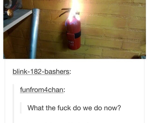 funny, lol, and fire image