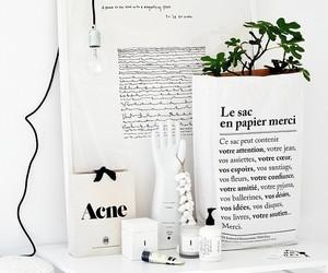 white, interior, and acne image
