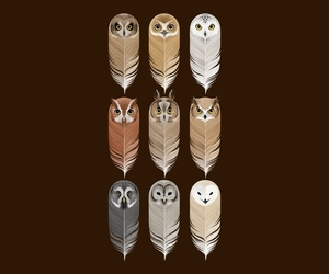 owl, art, and feather image