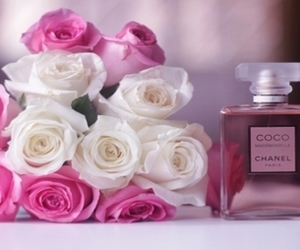 Blanc, chanel, and rose image