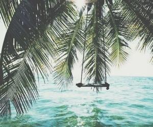 palm tree, swing, and beach image