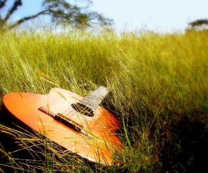 guitar, music, and grass image