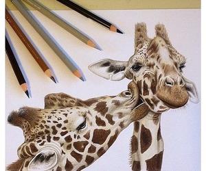 giraffe, drawing, and animal image