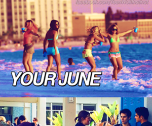 holiday, june, and summer image