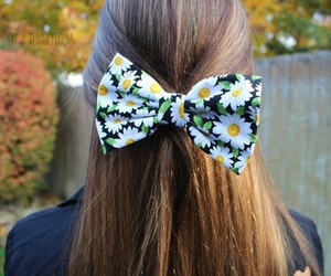 bow, daisies, and flowery image