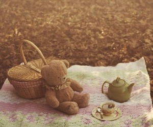 picnic, bear, and tea image