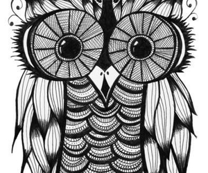 drawing, owl, and cute image