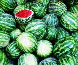 delicious, melon, and summer image