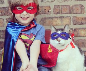cat, superman, and child image