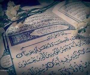 allah, islam, and amin image