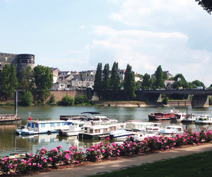 Angers, Fleurs, and vie image