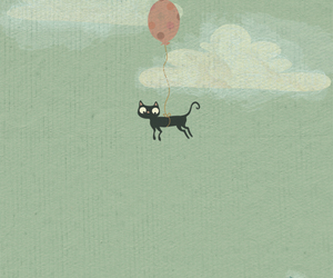 cat and fly image