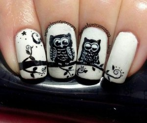 nails, owl, and art image