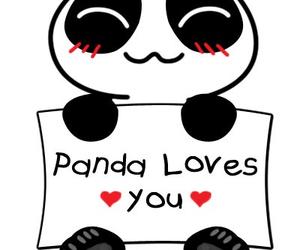 couple, panda, and hearts image