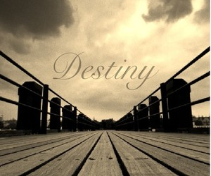 destiny, follow, and quote image