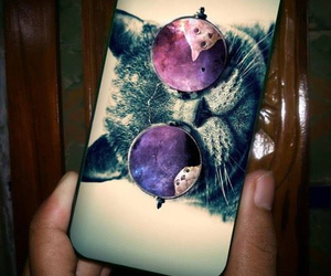 cat, case, and iphone image