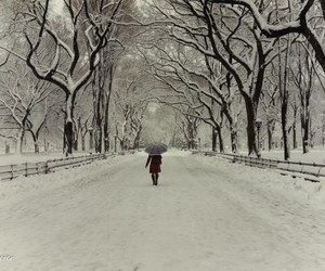 amazing, landscape, and Central Park image