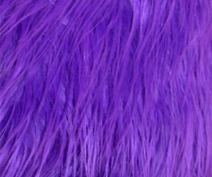 furry, fuzzy, and purple image