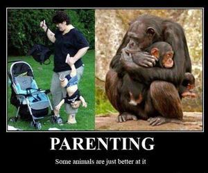 parenting, monkey, and animals image
