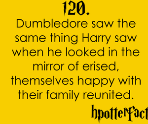 harry potter, dumbledore, and hpotterfacts image