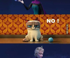 frozen, cat, and funny image
