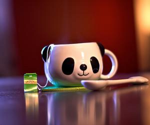 cute, panda, and cup image