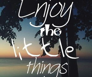 enjoy, little things, and quotes image