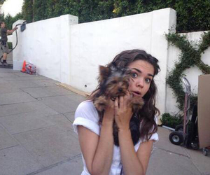 maia mitchell, icon, and tumblr image